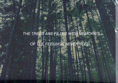 the paper kites | Tumblr