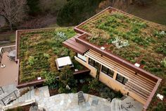 Green roofs provide many benefits, both environmentally and financially!