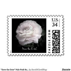 """Save the Date"" Pale Pink Rose Postcard Stamp"
