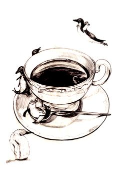 yumie ogawa [ Penguin Coffee ]