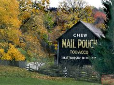 Many of these Barns around Tennessee!  That are painted with advertisments like this Mail Pouch Tobacco.  Most of the time it would be painted for free if you let them paint their advertisement on your barn!