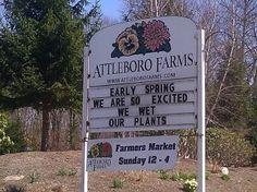 Landscaping Humor