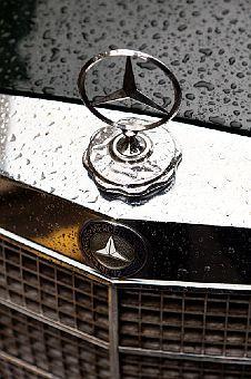 Abigail Ahern (Mercedes-Benz) /The Selby Mercedes 300, Mercedes Benz Logo, Mercedes Benz Cars, Car Key Holder, Abigail Ahern, Classic Mercedes, Hood Ornaments, Amazing Cars, Crocodile