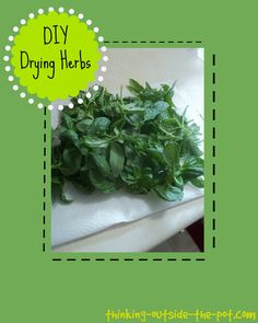 DIY Drying herbs