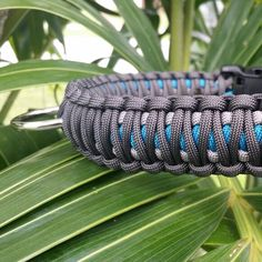 New King Cobra Collars! Great for big pups