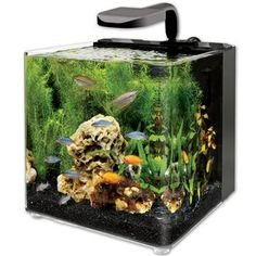 ... LED Aquarium Kit - Small Fish Tank and Betta Fish Tank from petco.com