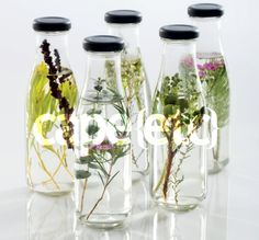 Sprigs of our fynbos and greens were popped into bottles and used in a shoot for the opening page of local Cape (etc) magazine. What a great idea!