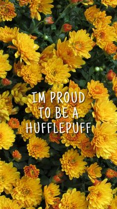 But I'm not a Hufflepuff, but for all my friends!!
