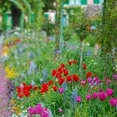 At Monet's garden, Giverny