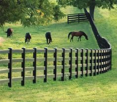 Blackline fencing. We have 3 rail. Just beautiful!!