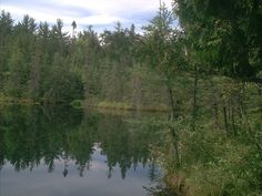 Auto tour in the Chequamegon National Forest