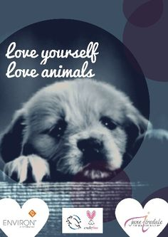All and products are Cruelty Free, Love You, Dogs, Movies, Movie Posters, Animals, Products, Te Amo, Animales