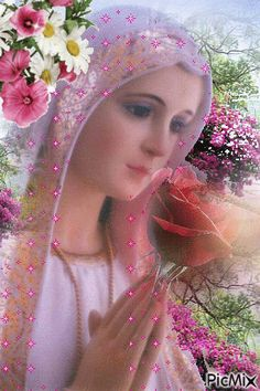 Immaculate Heart of Mary pray for us Mary Jesus Mother, Blessed Mother Mary, Mary And Jesus, Blessed Virgin Mary, Jesus Is Lord, Religious Pictures, Jesus Pictures, Religious Icons, Christian Artwork