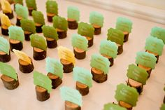 mini tree stumps for escort or place cards