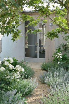 Velvet and Linen: Patina Farm garden  Floribunda roses, several different kinds of lavender and cat mint