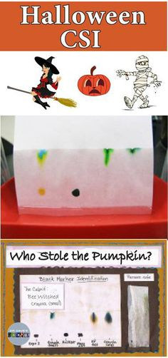Introduce some Halloween science into your classroom with a CSI forensic crime investigation! The activity requires 4-6 different brands of black markers (permanent and water-soluble). Students perform chromatography on a small piece of the note and compare the color pattern to the pattern of the suspect's markers to identify which marker was used to write the note.
