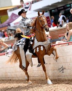 rhinestone parade saddles - Google Search | Parade saddles ...