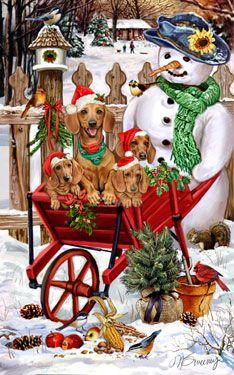 Shop for Cards - Dachshund - Dachshund/red - Snowflakes & Snowbirds