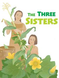 """Learn about the three foods so important to Native Americans they called them """"the three sisters."""" Readers will learn that corn, beans and squash were the three most important vegetables in many Native Americans' diets. The trio was meant to be planted, eaten and celebrated together. This article also gives information about other foods grown and harvested, and the role of boys and girls in helping their parents supply the tribe with food."""