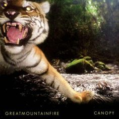 Les belges de Great Mountain Fire nous livrent « Canopy », un album anti-grisaille ultra festif