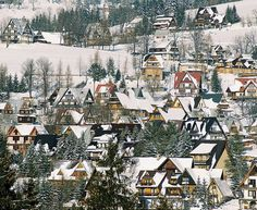winter in the Tatra Mountains, Zakopane, Poland