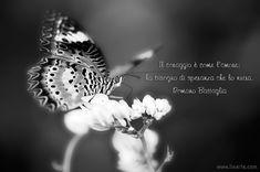 Romano Battaglia - Il coraggio è come l'amore