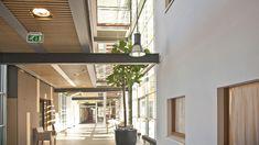 Atrium, Winter Garden, Health Care, Lighting, Outdoor Decor, Spaces, Google, Home Decor, Image