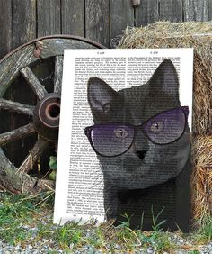 Black Cat with Sunglasses, Book Print