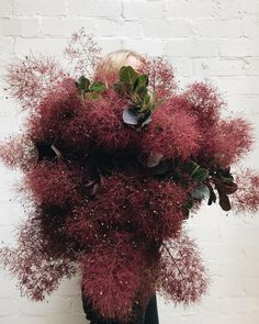 Red smoke bush by Sophia Kaplan Deco Floral, Floral Design, Floral Wedding, Wedding Flowers, Red Smoke, Garden Planning, My Flower, Wild Flowers, Floral Arrangements