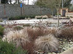 Walsingham Abbey Garden