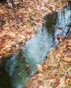 #WonderWatch 2016-30 Water Wander #ArtfulNature #stream #WildBeauty #wander #water #GoOutside #panature #pa #pennsylvania #Upper #DelawareRiverRegion #journey
