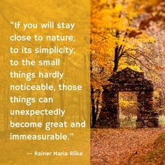 . Words Quotes, Wise Words, Me Quotes, Sayings, Rainer Maria Rilke, Meaningful Quotes, Inspirational Quotes, Mother Nature Quotes, Pantheism