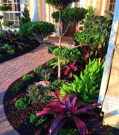 Florida Plants Landscaping, Tropical Backyard Landscaping, Courtyard Landscaping, Shade Landscaping, Tropical Garden Design, Small Front Yard Landscaping, Outdoor Landscaping, Landscaping Ideas, Florida Gardening