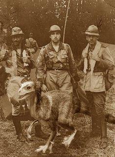 Expedição Rondon