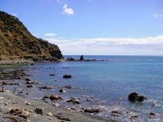 Makara Beach, Wellington, New Zealand