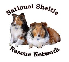 National Sheltie Rescue Dorothy's Page