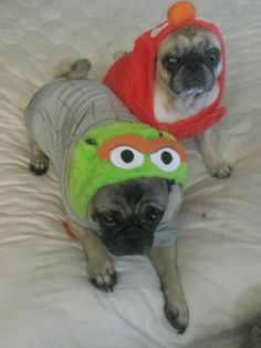 Grouch and Elmo!