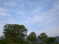 菰野町大羽根園地区 早朝散歩 平成24年5月26日撮影