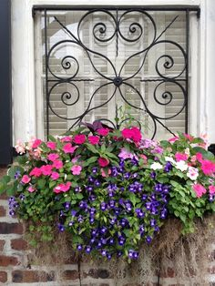 Beautiful Ironwork and Window Box