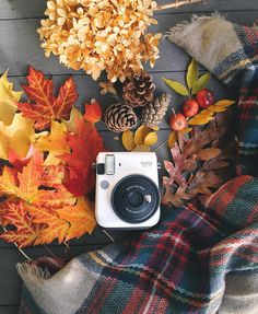 Super exciting contest time! Thanks to @fujifilm_instax_northamerica I'm giving away this fantastic new Instax mini 70 from Fujifilm. It's awesome! ____ The theme of the contest is fall. Post a fall photo between now and Friday November 13 using the tags #myinstax and #punko_instax for a chance to win. New photos only please.  Good luck! by punkodelish