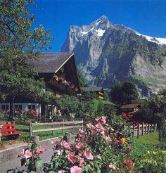GRINDELWALD, SWITZERLAND. This is one of the most charming villages on the planet!