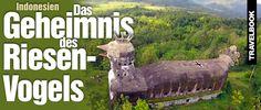 """The #secret of """"#Chicken #Church"""" in #Indonesia:Das #Geheimnis des #Riesenvogels im #Dschungel http://www.travelbook.de/welt/chicken-church-das-geheimnis-des-riesenvogels-im-dschungel-676707.html"""