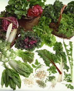 7 Steps to Make Over Your Salad