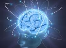 La gimnasia cerebral es también conocida como Brain Gym y es una técnica de ejercicios que te permitirán mejorar el rendimiento de tu cerebro y agilizar tu mente. Haz click en el enlace para leer más y ¡Si te gusta comparte! #ciencia #salud #gimnasia #cerebral #mental