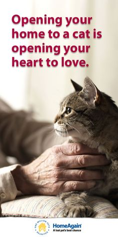 Must love cats - Inspirational cat pin! Opening your home to a #cat is opening your heart to love!