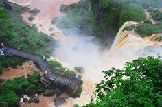 Creado en 1934 y declarado Patrimonio Natural en 1984, el Parque Nacional Iguazú, ubicado en la provincia de Misiones, es el marco de uno de los espectáculos naturales más bellos e impactantes del mundo: las Cataratas del Iguazú.  #Argentina | #ArgentinaEsTuMundo | #Litoral | #LitoralArgentino | #Misiones | #Patrimonio | #PatrimonioMundial | #Paisaje | #Iguazu | #ParqueNacional | #Cataratas | #CataratasDelIguazu Iguazu Falls, Niagara Falls, South America, World, Nature, Photography, 1984, Travel, Outdoor