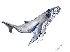 Humpback Whale Original watercolor painting 9 X 12 by ORIGINALONLY