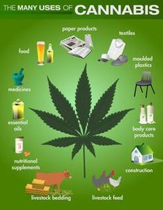 The many uses of cannabis!