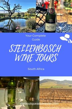 Beautiful Stellenbosch is one of the loveliest areas in South Africa's Western Cape. Stellenbosch wineries are fantastic. Stay in lovely Stellenbosch and take the Vine Hopper or one of the other private or guided tour options. Or if you're limited on time do a Cape Town day trip to visit Stellenbosch. I cover off all the different options for Stellenbosch Wine Tours #stellenbosch #stellenboschsouthafrica #stellenboschwine #stellenboschwineries #southafricawineries #stellenboschtours