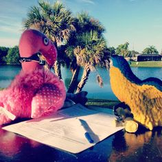 Patsy & Paulie help record cleanup data for International Coastal Cleanup 2012 at Lake Betty Park, Port Charlotte, Florida.